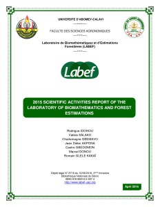 Labef_rapport_version 2015_First page1
